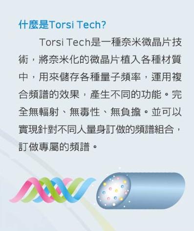 Torsi Tech1
